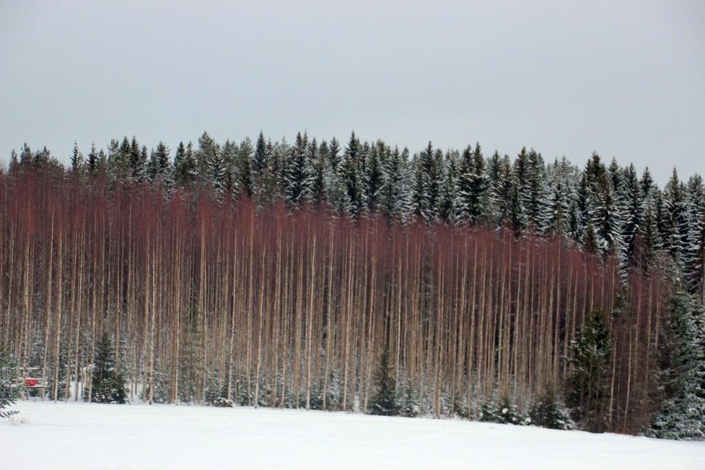 Himos Finland
